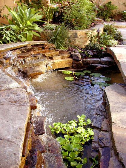 Tropical Landscape by AMS Landscape Design Studios, Inc.