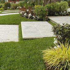 Traditional Landscape by AMS Landscape Design Studios, Inc.