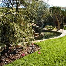 Asian Landscape by AMS Landscape Design Studios, Inc.