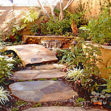 Tropical Landscape by AMS Landscape Design Studios, Inc.