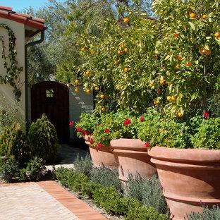 На фото: огород на участке на переднем дворе в средиземноморском стиле с