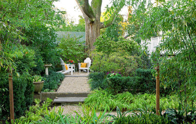 This Design Move Can Make a Garden Feel More Expansive