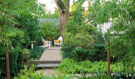 This Design Move Can Make a Garden Feel More Expansive