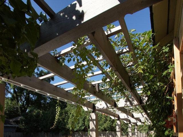 アジアン 庭・ランドスケープ by Ground One Landscape Design + Build