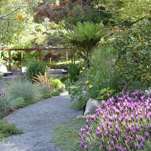 This is an example of a large contemporary backyard partial sun formal garden for spring in San Francisco with gravel.