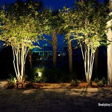 Modern Landscape by Moonlighting Landscape Lighting Systems