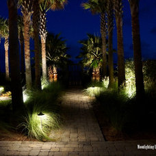Modern Landscape by Moonlighting Landscape Lighting Systems
