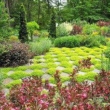 Eclectic Landscape by Andrew Grossman Landscape Design