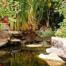 Tropical Landscape by Giordano Construction Inc.