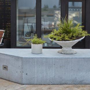 Свежая идея для дизайна: большой солнечный засухоустойчивый сад на заднем дворе в стиле модернизм с местом для костра, хорошей освещенностью и настилом - отличное фото интерьера