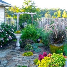 Eclectic Landscape Arbor Garden