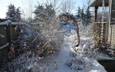 6 Ways to Beat the Winter Blahs