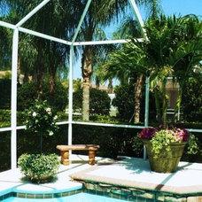 Tropical Landscape by RFL INC