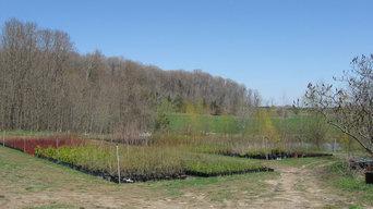 Around the Not So Hollow Native Tree and Shrub Farm