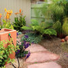 6 Reasons Why You Should Save Your Rainwater Now