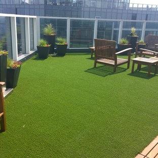 Kleiner Moderner Dachgarten mit Kübelpflanzen und Pflasterklinker in Seattle