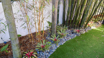Artificial Grass / Turf