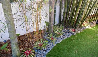 Artificial Grass / Turf