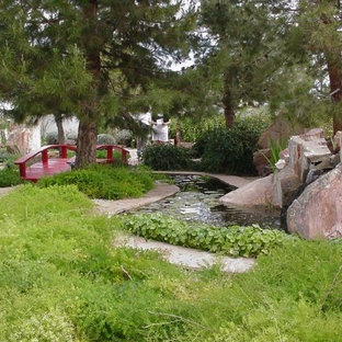 Photo of an asian landscaping in Phoenix.