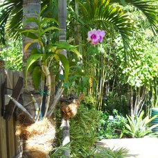 Asian Landscape by Gardening Angel