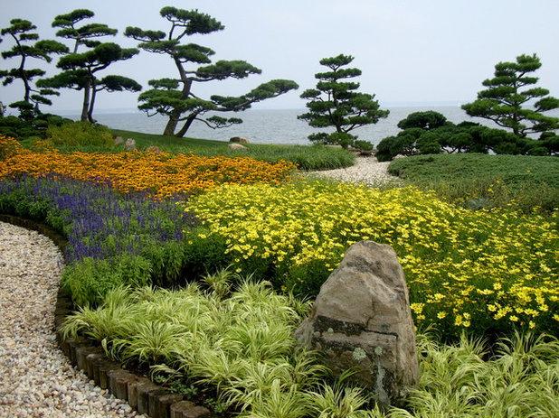 Asian Landscape by Morano Landscape Garden Design Ltd