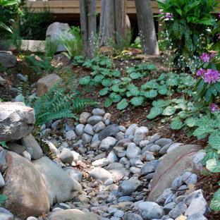Asiatischer Garten in Charlotte