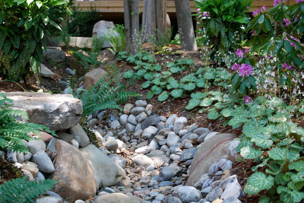 Asian Landscape by Jay Sifford Garden Design