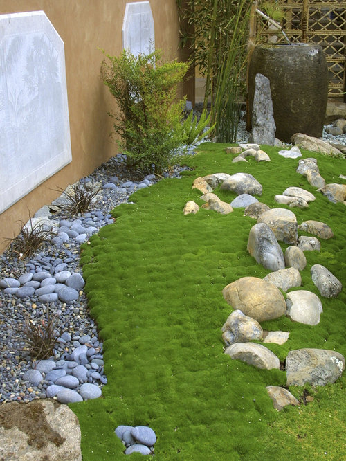 garden design with irish moss home design ideas pictures remodel and decor with home - Home And Garden Channel
