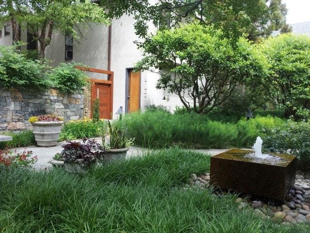 Contemporary Garden by Design Farm Group