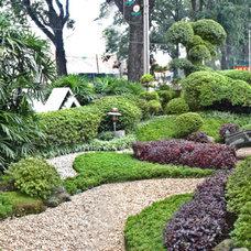 Asian Landscape by angelien garden & landscape