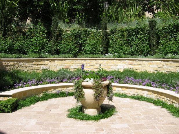 8 piante fiorite per un giardino sensoriale for Lantana strisciante
