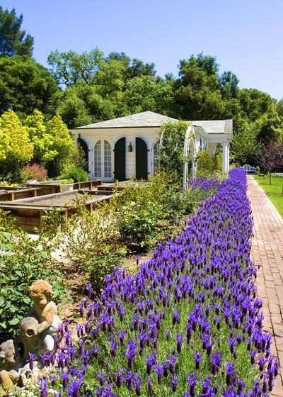 Traditional Landscape Atherton Garden House