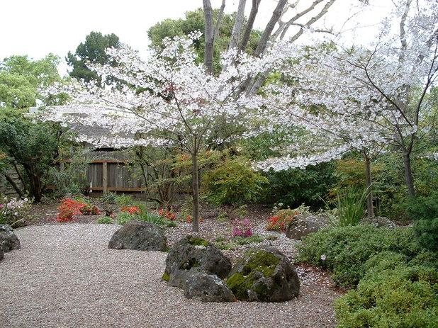 Asiatique Jardin by Kikuchi + Kankel Design Group