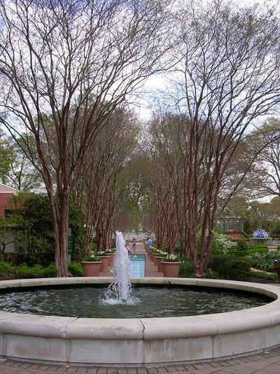 Landscape Atlanta Botanical Gardens