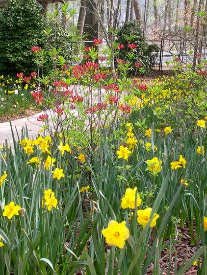 Landscape Atlanta Botanical Gardens Spring 2012