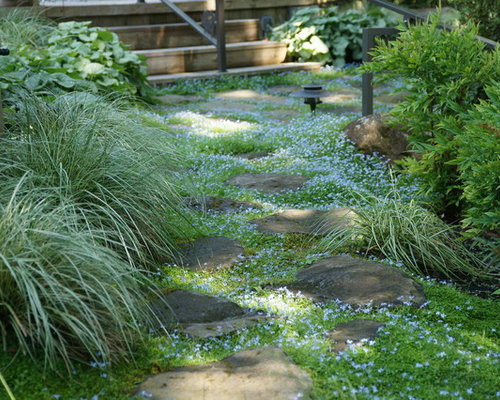 Modern Landscaping Ideas Design Photos Houzz
