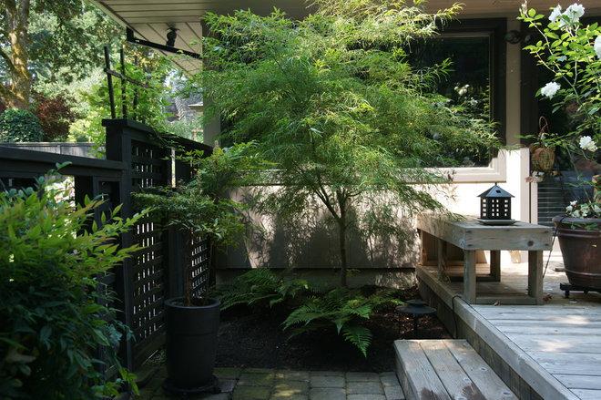 Modern Landscape by Creative Garden Spaces