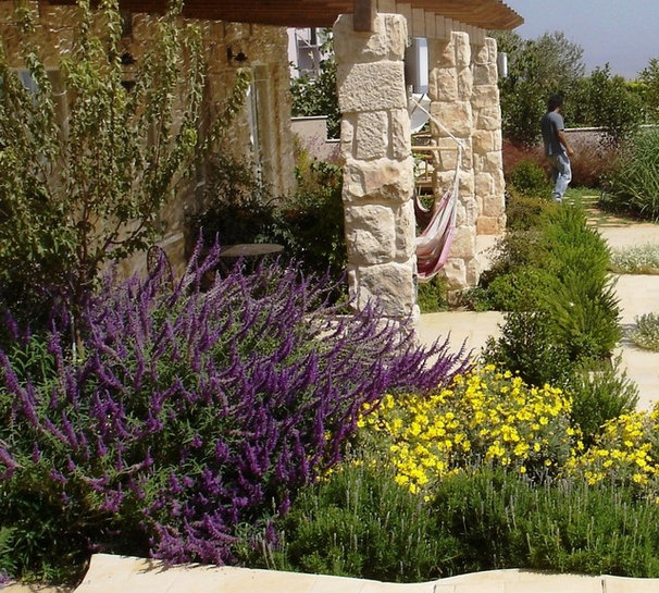 Mediterranean Landscape by GARDENIA-Sharly & Tanya Illuz