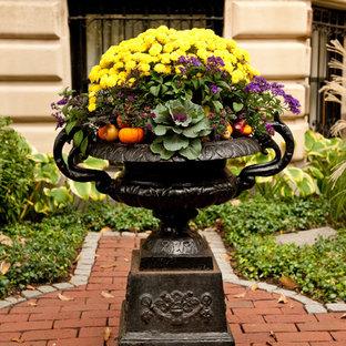 На фото: участки и сады в классическом стиле