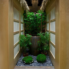 Asian Landscape by Dana Berkus Interiors