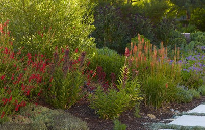 Red lava rock in flower beds in houston for Red rock for flower beds