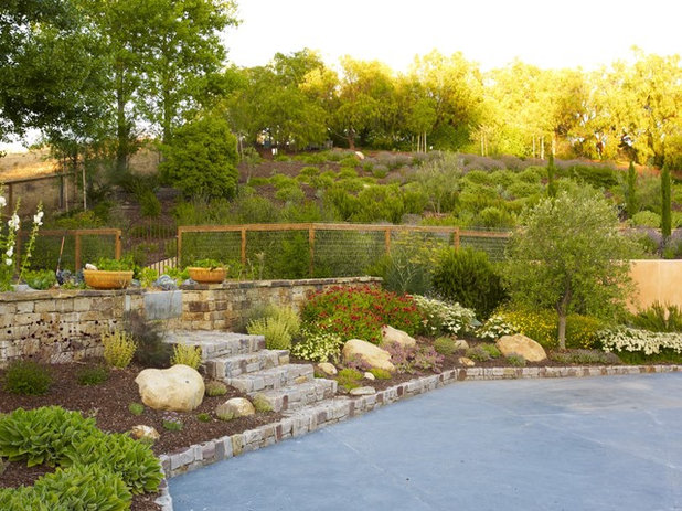 Easy care landscaping with rocks and boulders for Easy to care for landscaping