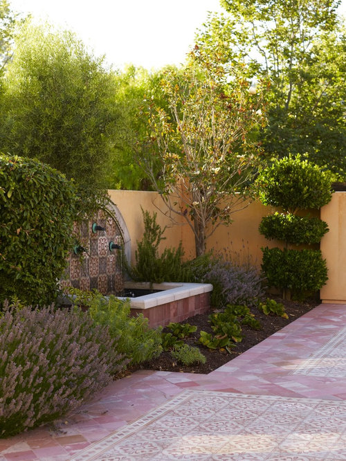 design ideas for a courtyard landscape in san luis obispo with a fountain