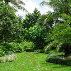 Tropical Landscape by Botanical Visions