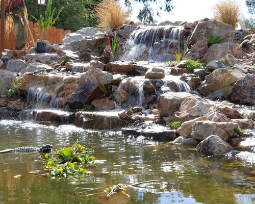 Awesome koi pond and waterfall for Awesome koi ponds