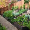 Que faire dans son jardin au mois de février ?