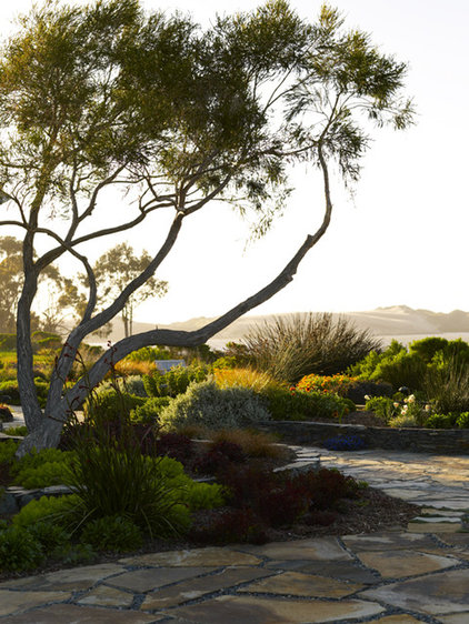 Beach Style Landscape by Jeffrey Gordon Smith Landscape Architecture