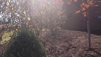 Back yard Landscape Design Install in Spring Hill TN near Nashville Tennessee