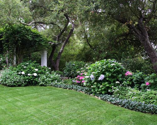 Shade loving border plants home design ideas renovations for Shrubs for garden borders