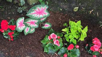 Back yard shrubbery | Artistry Landscaping Design